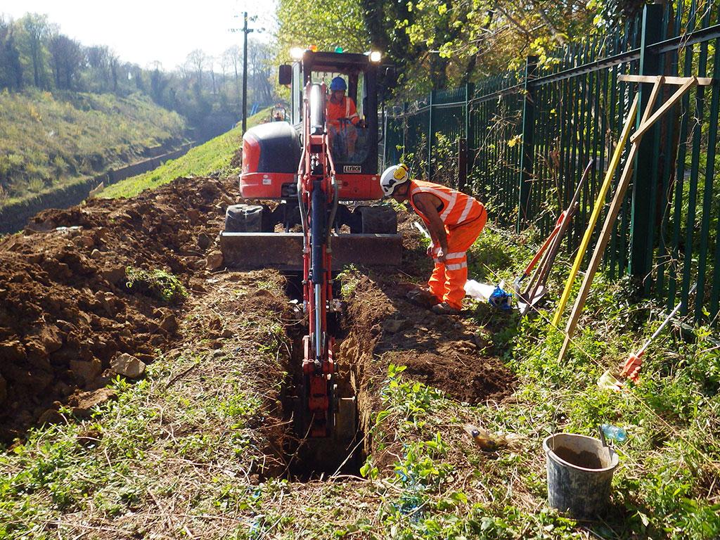 Arboricultural consultant providing arboricultural site supervision