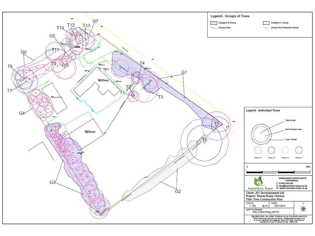 Tree Report to Comply With BS 5837:2012