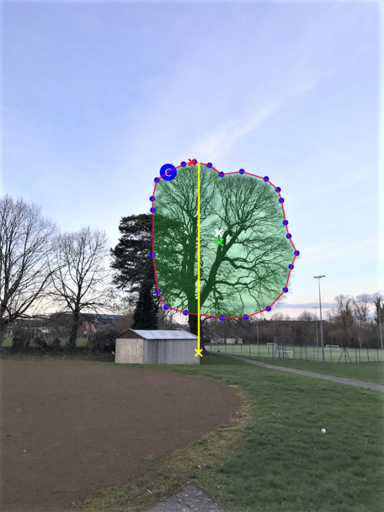 Tree Wind Load Estimation